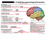 Illustration of amicus,injury,neuropsych,neuropsychological,evaluation,report,chart,brain,deficits,function,dysfunction