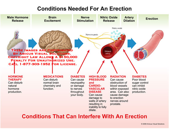 Cialis Blood Circulation