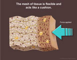 The mesh of brain tissue is flexible and acts like a cushion.