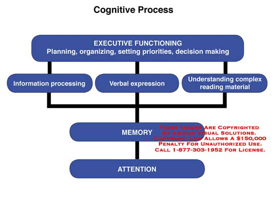 cognitive process This page provides information to educators of students with asd about cognitive processing.