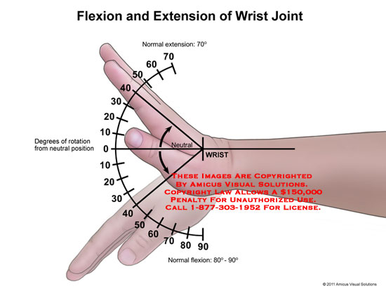 amicus,anatomy,range,motion,wrist,joint,flexion,extension,neutral,degrees,rotation,position,