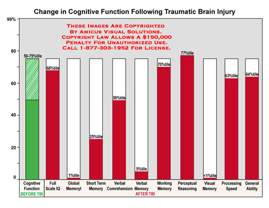 amicus,medical,brain,injury,traumatic,cognitive,function,change,TBI,full,scale,IQ,global,memory,short,term,verbal,comprehension,working,perceptual,reasoning,processing,speed,general,ability