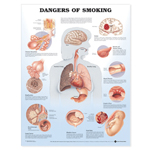 anatchart,chart,smoking,dangers,chronic,bronchitis,emphysema,lung,cancer,bladder,stroke,mouth,throat,heart,disease,gastric,ulcer,fetal,risks,smoker