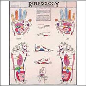 anatchart,chart,reflexology,reflex,points,hands,feet