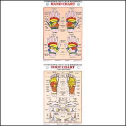anatchart,chart,hand,feet,foot,reflex,reflexology,reflexes